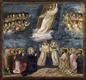 ascension_giotto1