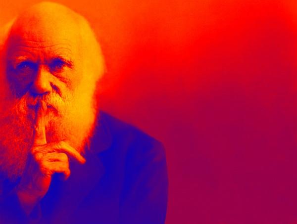 7 русских следов теории Дарвина
