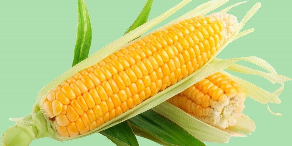 Украина удвоила экспорт кукурузы в Китай