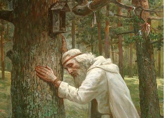 Какое влияние язычники оказали на политику после Крещения Руси