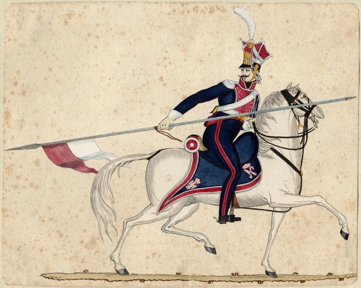 Белые кони Жечи Посполитой (14 фото)